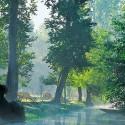Saint-Hilaire-la-Palud - A la découverte du Marais Sauvage