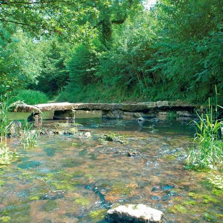 Saint-Romans-lès-Melle - Au fil de la Béronne