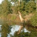 Le Beugnon - Le ruisseau de la Fontaine au Loup