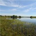 Saint-Loup-Lamairé - Espace Naturel Sensible du Lac du Cébron