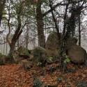 Cerizay - La boucle du Plessis, chemin des lavoirs et des châteaux
