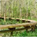 Argentonnay - Espace Naturel Sensible La passerelle d'Auzay