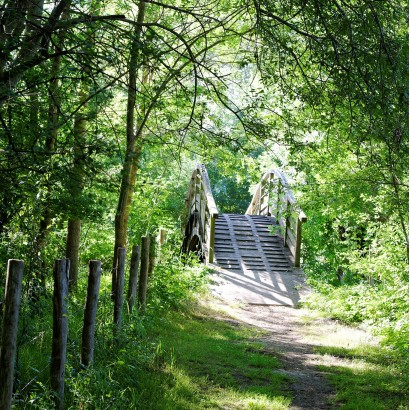 Saint-Georges-de-Rex Amuré - Espace Naturel Sensible Marais de Saint-Georges-de-Rex et d'Amuré