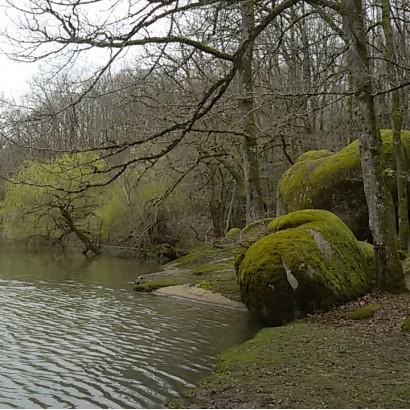 Ménigoute - Etand de Bois Pouvreau