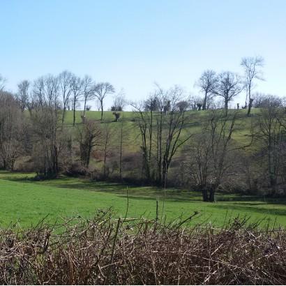 Le Busseau - Le ruisseau des Fougères