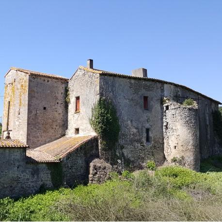Faye-L'Abbesse Les moulins du Thouaret