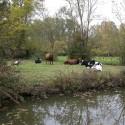 Sansais-La-Garette - La chevauchée du Marais Poitevin