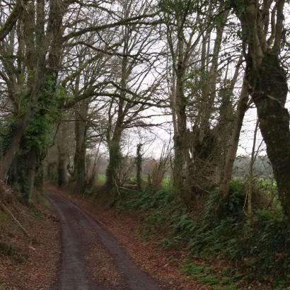 De la voie verte aux moulins