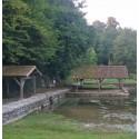 Tillou - La Somptueuse
