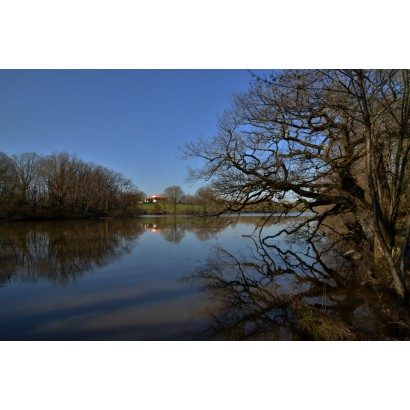 chirons étang de Bois Pouvreau